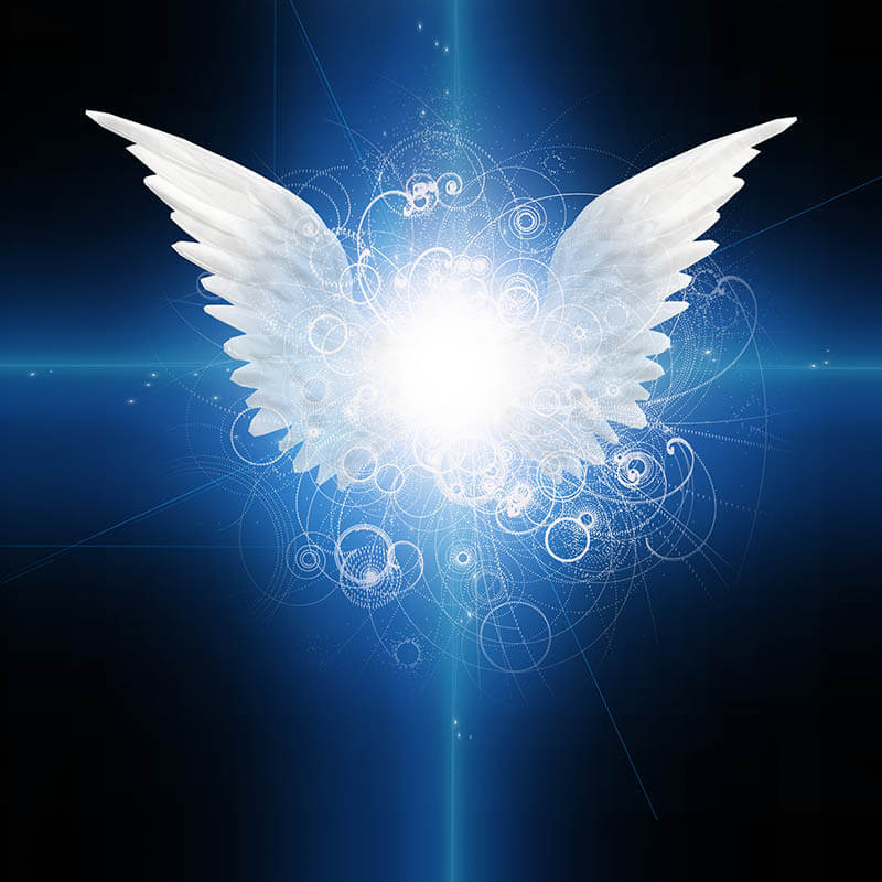 Illustrations of angel wings on a dark blue background